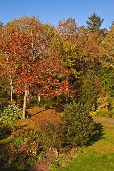 Autumn by canonfan