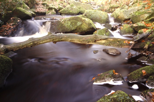 padley george by mobex0177
