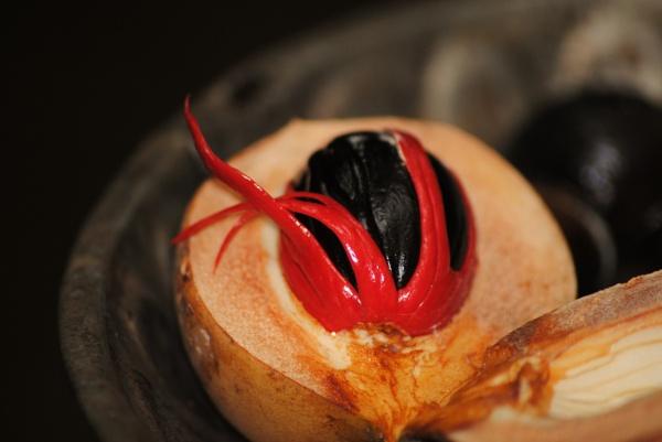 Nutmeg... by Chinga