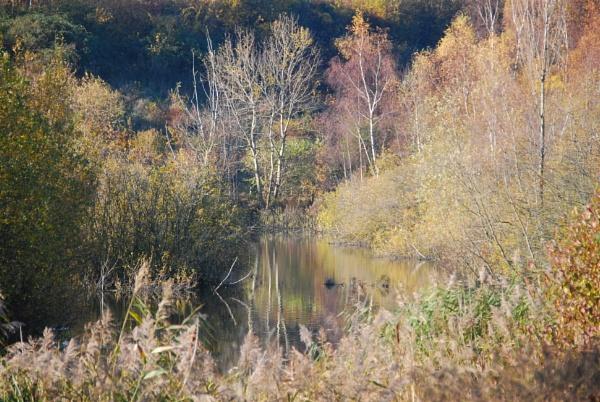 Chafford Gorge Essex by stephens55