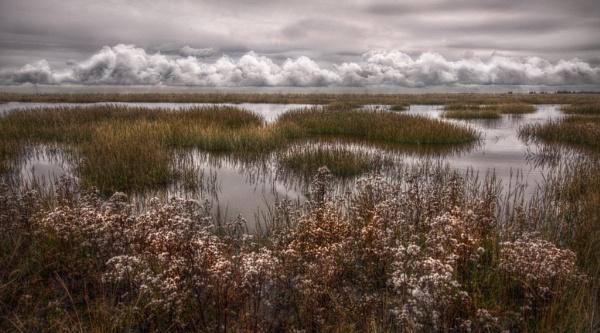 Pegwell Bay. by carper123