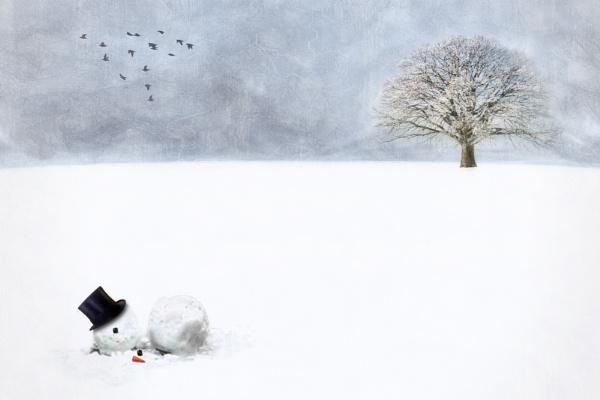 The Forgotten Snowman by Baden