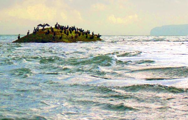 ship wreck by pks