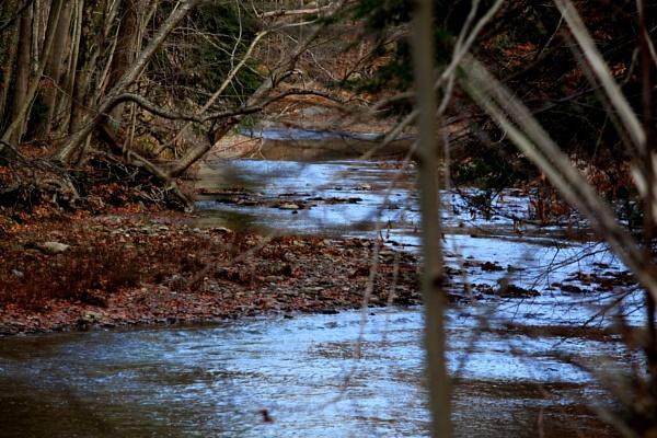 gentle down the stream by blkwolf007
