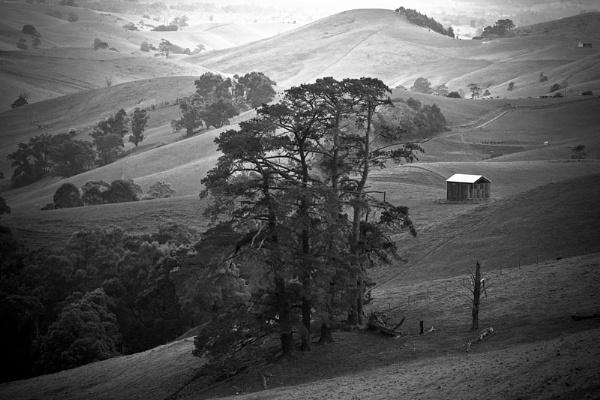 Gippsland ,Victoria ,Australia by chrisw1
