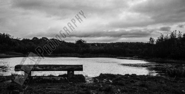 Lakeside Bench by Bingsblueprint