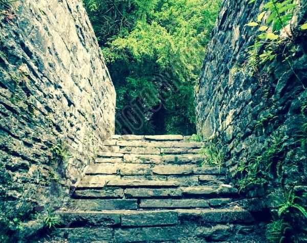 Cellar Stairway by Bingsblueprint