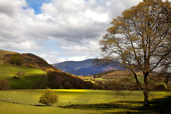 Skiddaw from Wythop, Lake District by brianaskew