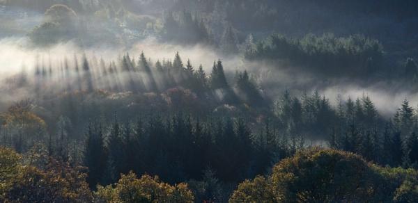 Burrator Mists by AlanHowe