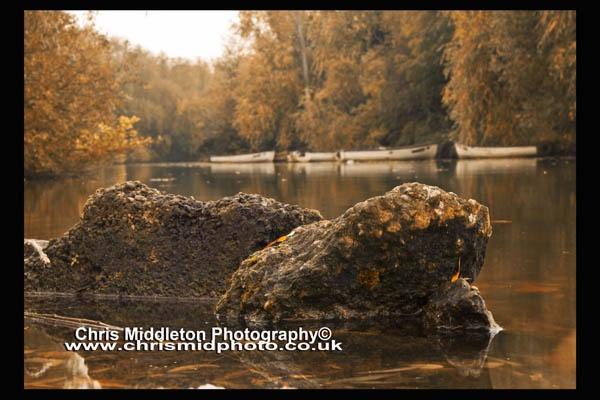 Golden Autumn by photonut1