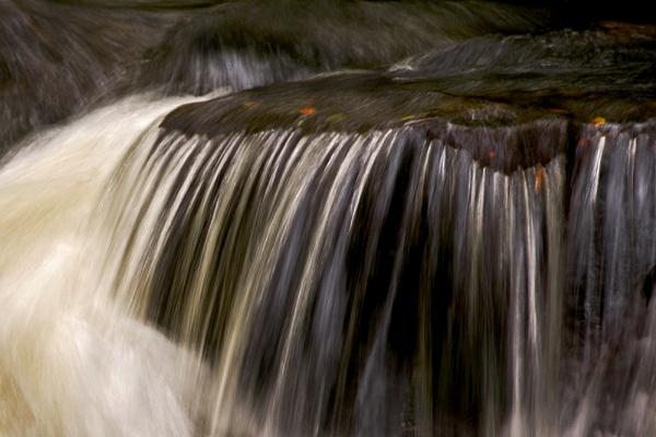 Golitha Falls by Sezz