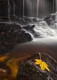 Ess Na Crub waterfall & Leaf