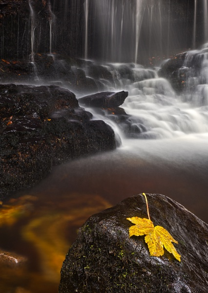 Ess Na Crub waterfall & Leaf