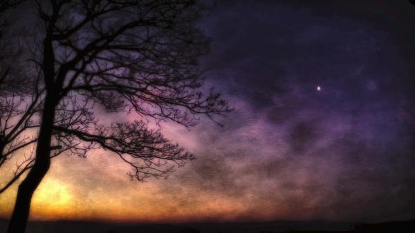 Moon dawn by mlseawell