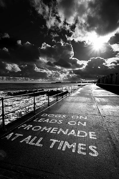 Promenade by KathyW