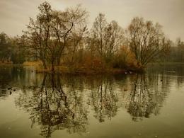 naked autumn