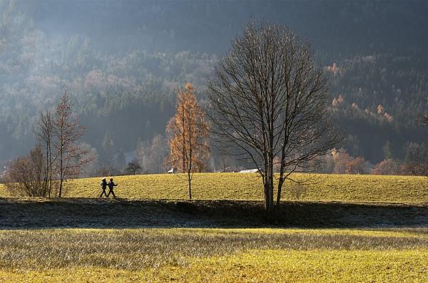 A Walk In Autumn by headskiesfly