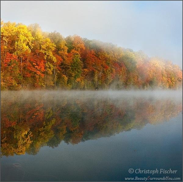 Autumn Light by ChristophFischer
