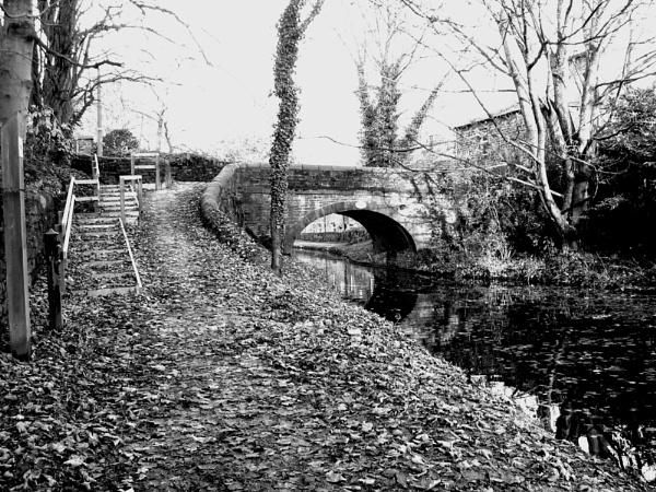Canal bridge by prin