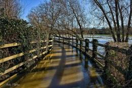 Public Floodpath