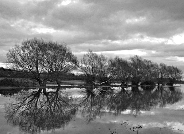 Flooded reflections by MidnightMaya