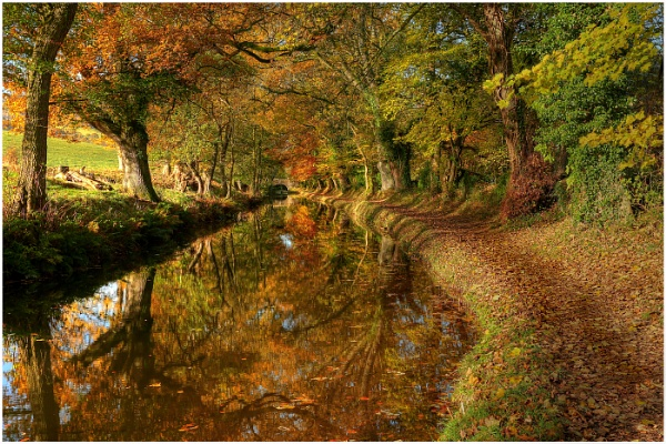 Russet Reflections by Alan_Coles