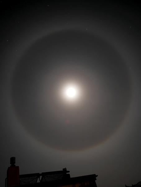 November Moon by warbstowcross