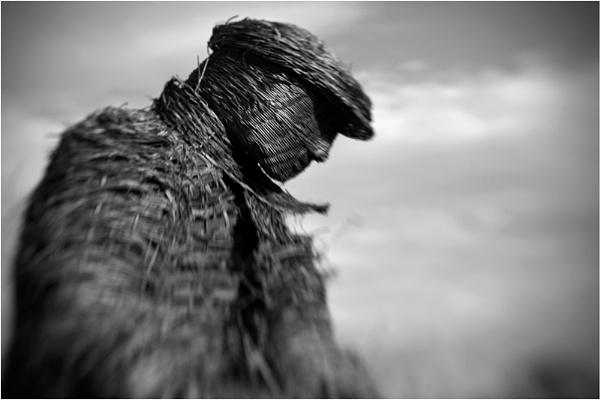 The Wicker Man by mrswoolybill