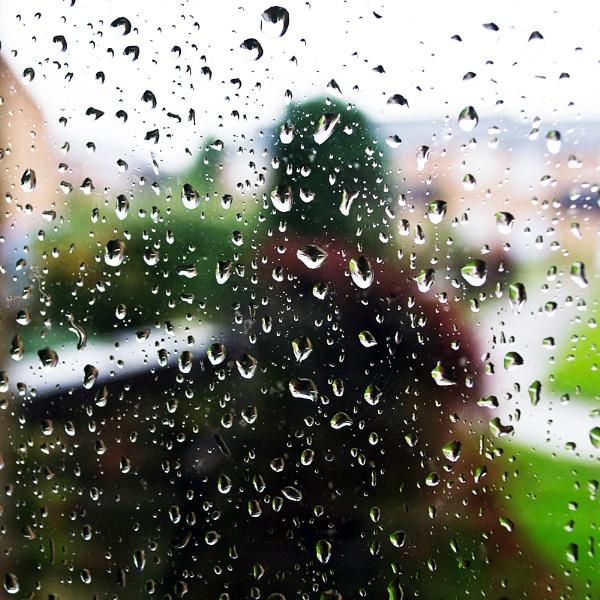 "20-11-12 \""Rain.\"" by Jestertheclown"