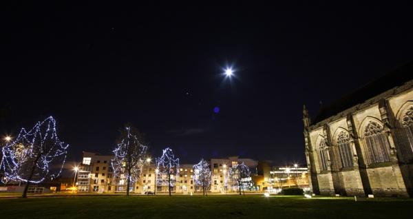 moonlit paisley by steve486