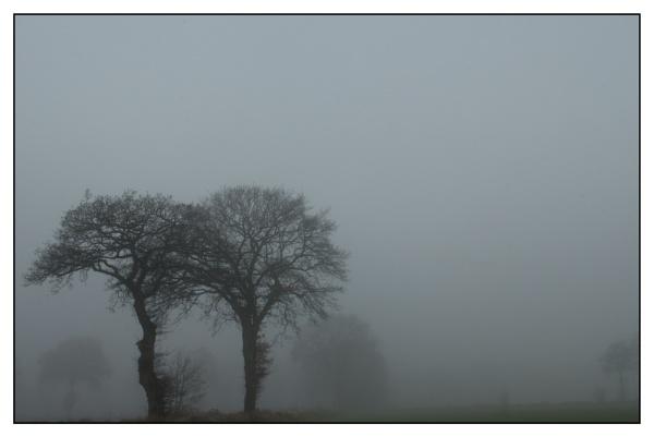 fog nr. 2 by echoschall