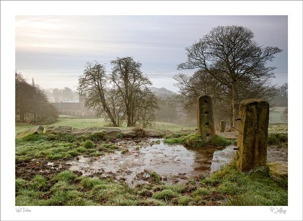 Well trodden path by petejeff