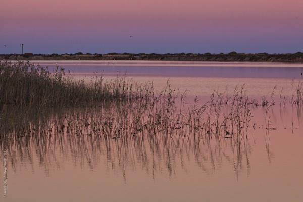 Lo Pagan salt lakes by elainecookstown