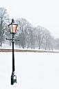 The Warm Lamp