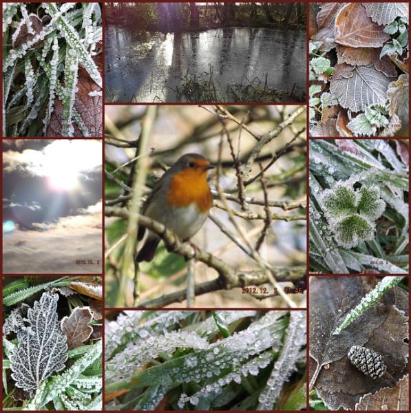 The Beauty of A Frosty Morning by Mototaur