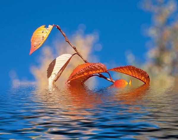 Autumn Floods by THIRTYFIVEMILL