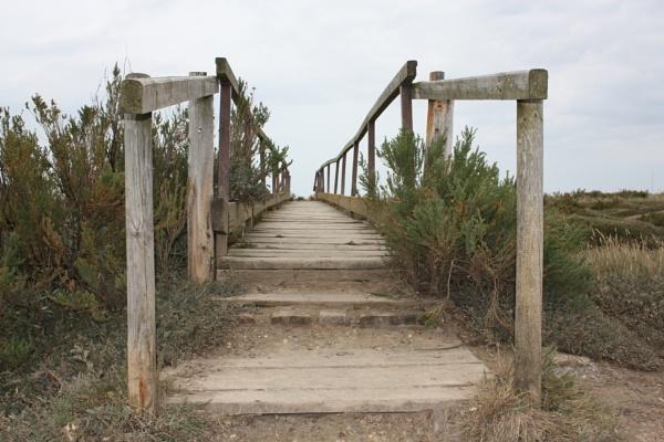Troubled bridge over water by Meheecho