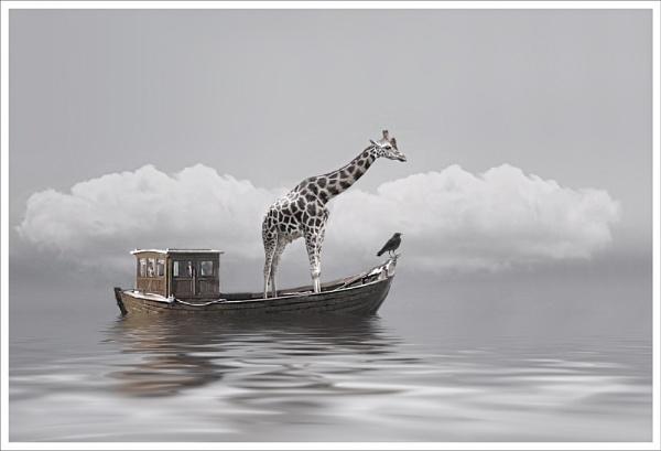 The Ark 2 by clintnewsham