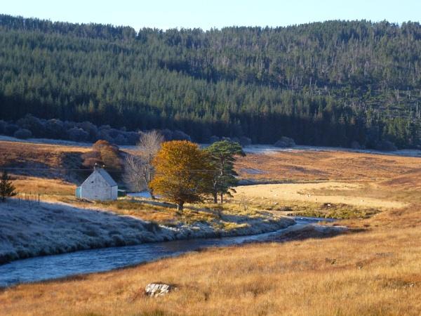 Untitledautumn frost by emacklyn