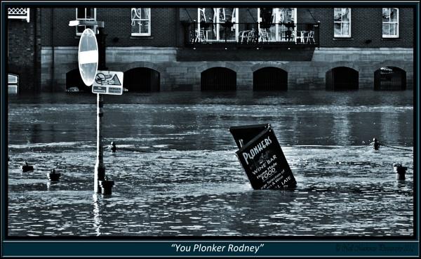 you plonker rodney by jimmymack