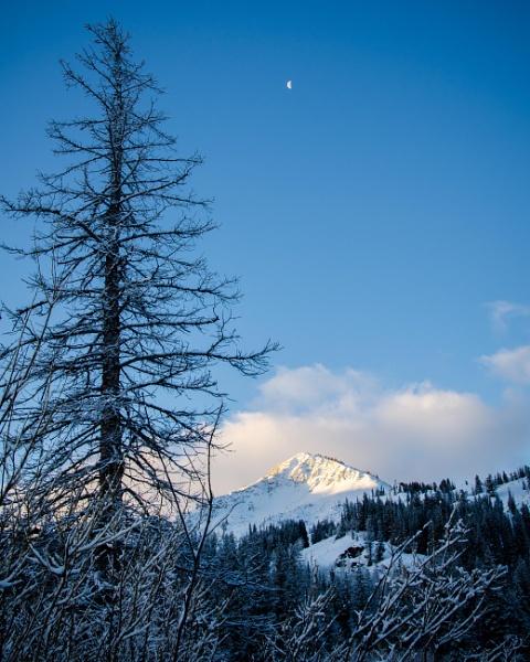 Silver Lake Moon