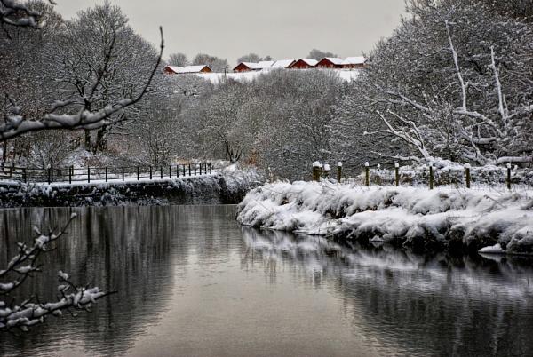 winter in UK by sylwia_sylwia