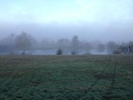 Misty Henley on Thames