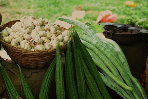More greens... with garlic by Chinga
