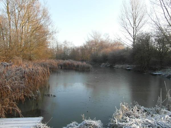 frosty morning by kazza12