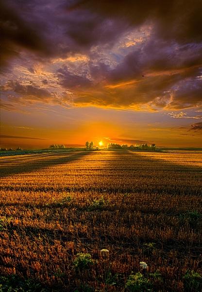 Good Morning by HorizonHunter