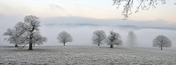 Freezing Fog by MomentsInTime
