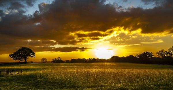 Golden Sunset by MomentsInTime