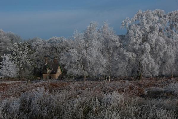 A good frost?? by Gazzten