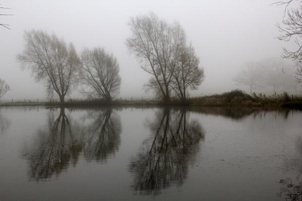 Fog on the Lake by auraalan